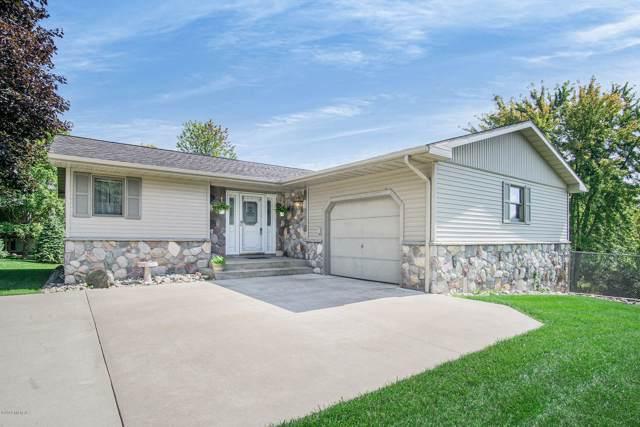 356 Birch Street, Fremont, MI 49412 (MLS #19045366) :: Deb Stevenson Group - Greenridge Realty