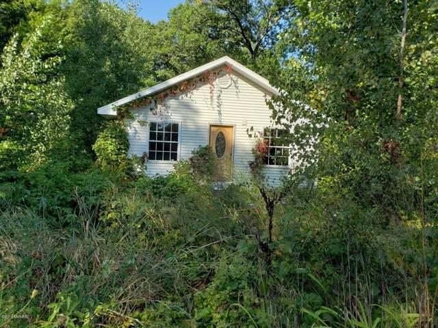 8611 Swan Avenue, Newaygo, MI 49337 (MLS #19045627) :: Deb Stevenson Group - Greenridge Realty