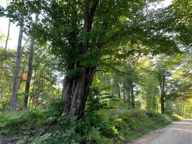 V/L 22 Mile Road, Tustin, MI 49688 (MLS #19045673) :: Deb Stevenson Group - Greenridge Realty