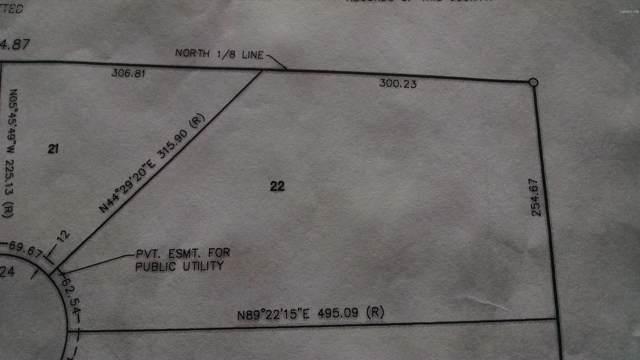22 Mitchell Creek Trail, Big Rapids, MI 49307 (MLS #19045779) :: Deb Stevenson Group - Greenridge Realty