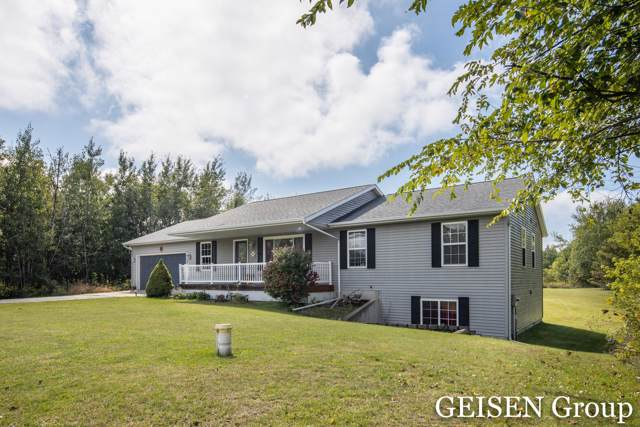 6979 Riverwood Drive, Belding, MI 48809 (MLS #19045905) :: Deb Stevenson Group - Greenridge Realty