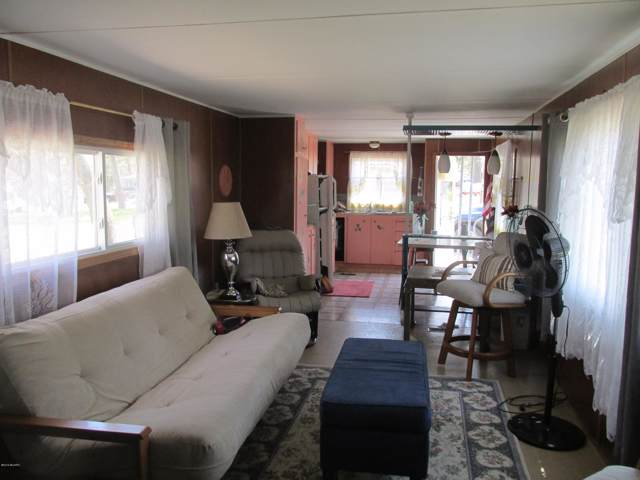 7446 Park Place, Mecosta, MI 49332 (MLS #19046240) :: Deb Stevenson Group - Greenridge Realty