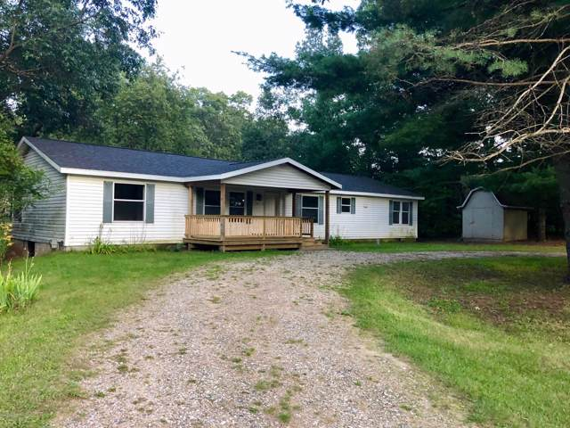 4457 Young Street, Brethren, MI 49619 (MLS #19046318) :: Matt Mulder Home Selling Team