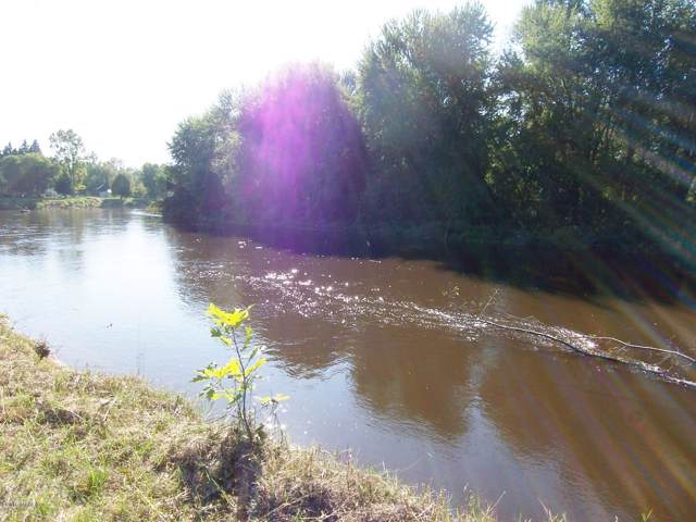 Lot 36 E River Drive, Evart, MI 49631 (MLS #19046415) :: Deb Stevenson Group - Greenridge Realty