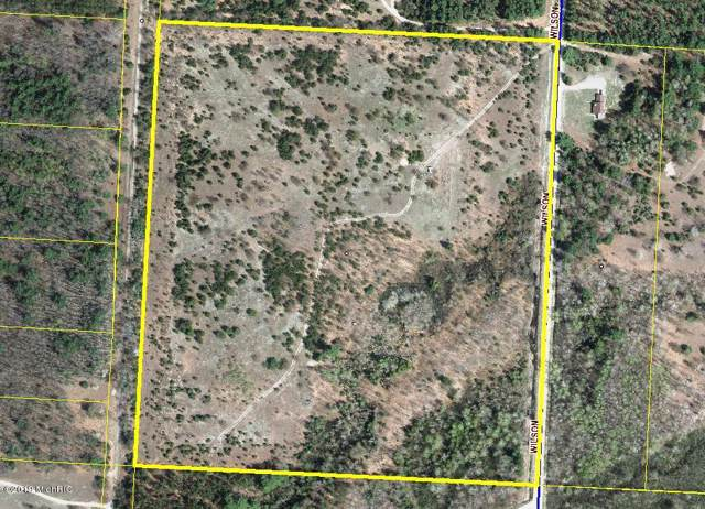 Acreage Wilson Road, Kaleva, MI 49645 (MLS #19046550) :: Deb Stevenson Group - Greenridge Realty