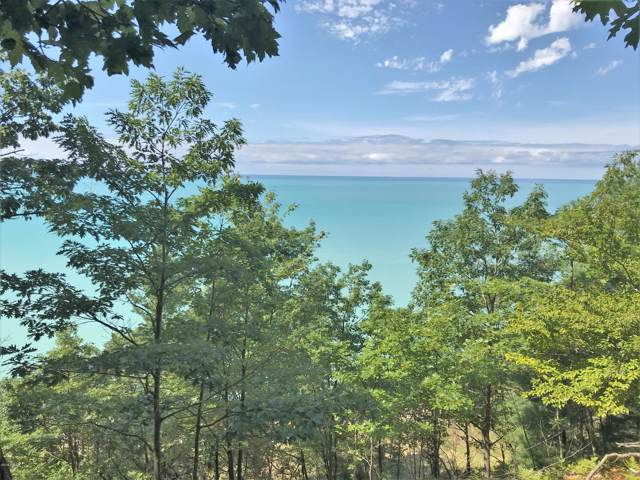 5903 S Birchwood Drive, Ludington, MI 49431 (MLS #19046587) :: JH Realty Partners
