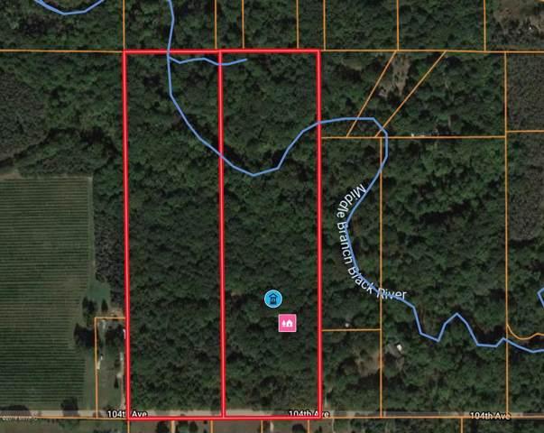 5667 104 Th Avenue, Grand Junction, MI 49056 (MLS #19046697) :: CENTURY 21 C. Howard