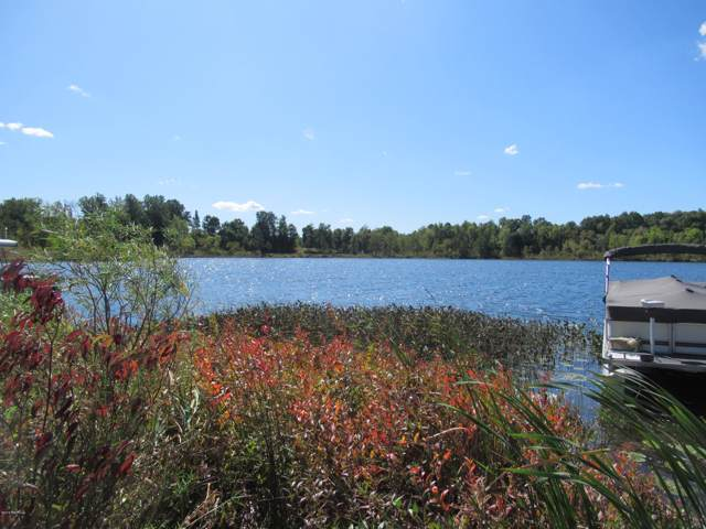 Paradise Lake Road, Vandalia, MI 49095 (MLS #19046762) :: Deb Stevenson Group - Greenridge Realty