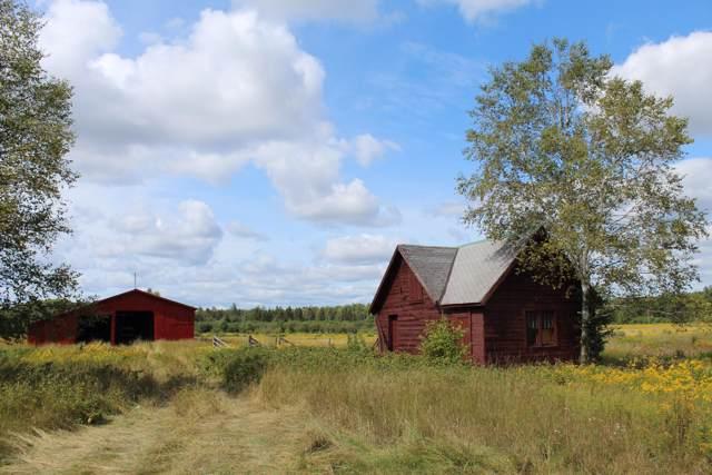 17405 W Filer Road, Rudyard, MI 49780 (MLS #19046949) :: CENTURY 21 C. Howard