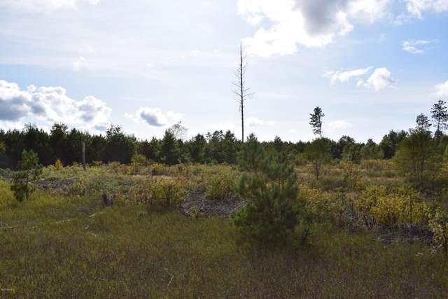 8878 Horseshoe Creek Road, Kaleva, MI 49645 (MLS #19047314) :: Deb Stevenson Group - Greenridge Realty