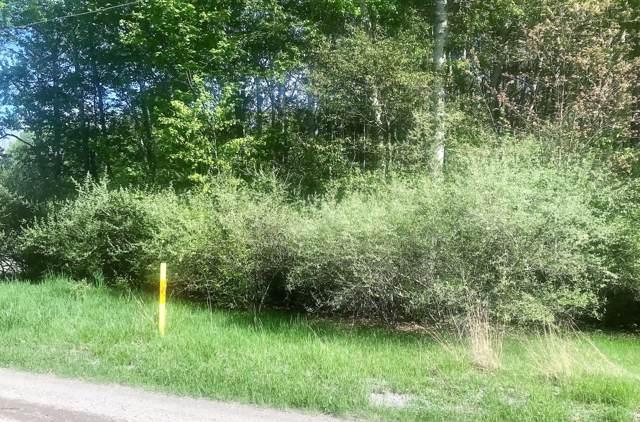 W Victory Drive, Ludington, MI 49431 (MLS #19047808) :: JH Realty Partners
