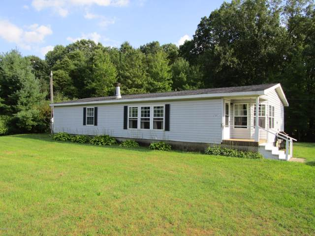 27887 Co Rd 388, Gobles, MI 49055 (MLS #19047961) :: Matt Mulder Home Selling Team