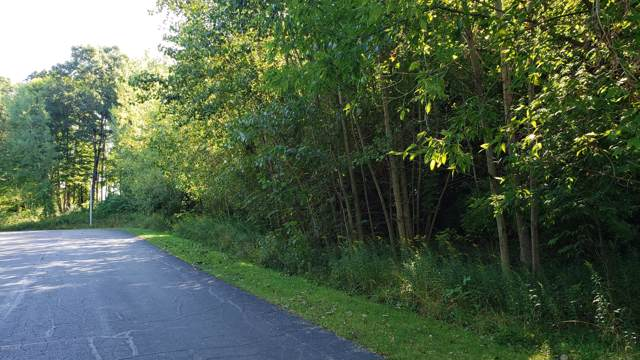 269 Markus Glen Drive #25, Plainwell, MI 49080 (MLS #19048206) :: Jennifer Lane-Alwan