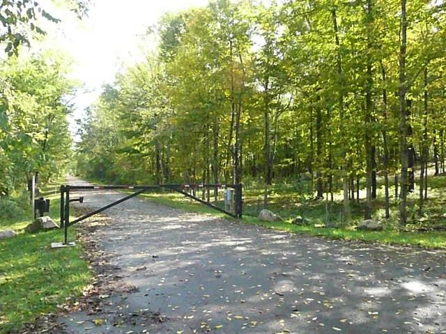 Unit 15 Long Lake Drive, Cassopolis, MI 49031 (MLS #19048336) :: Deb Stevenson Group - Greenridge Realty