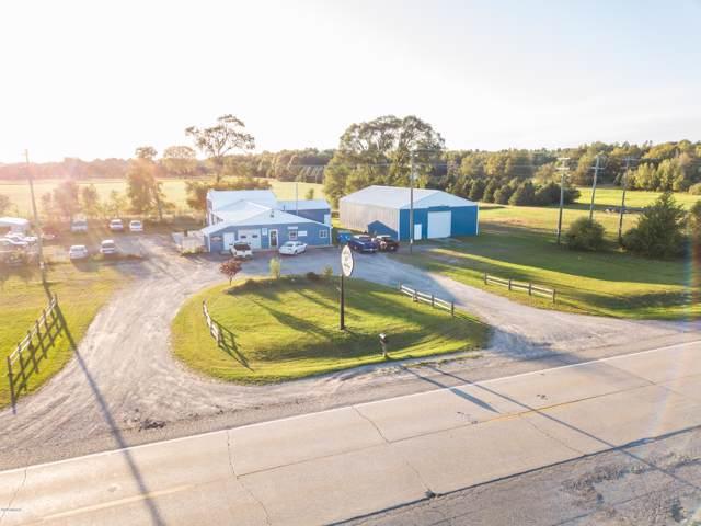 6595 N Oceana Drive, Hart, MI 49420 (MLS #19048592) :: Deb Stevenson Group - Greenridge Realty