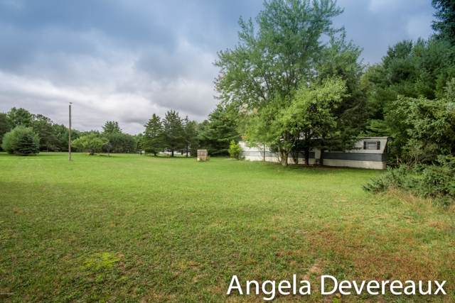 3985 S Beech Avenue, Newaygo, MI 49337 (MLS #19048950) :: Deb Stevenson Group - Greenridge Realty