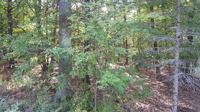 9679 W 7 Mile Road, Irons, MI 49644 (MLS #19049045) :: JH Realty Partners