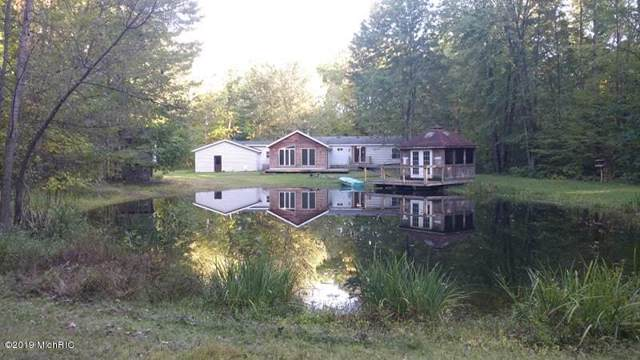 8511 Linden Ave Avenue, Newaygo, MI 49337 (MLS #19049165) :: Deb Stevenson Group - Greenridge Realty