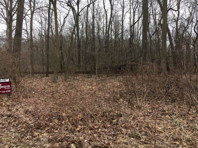 1.39 Acres S Gull Lake Drive, Richland, MI 49083 (MLS #19049206) :: Ron Ekema Team