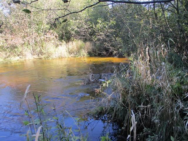 V/L-10.4A W River Ridge Road, Pentwater, MI 49449 (MLS #19049368) :: Deb Stevenson Group - Greenridge Realty