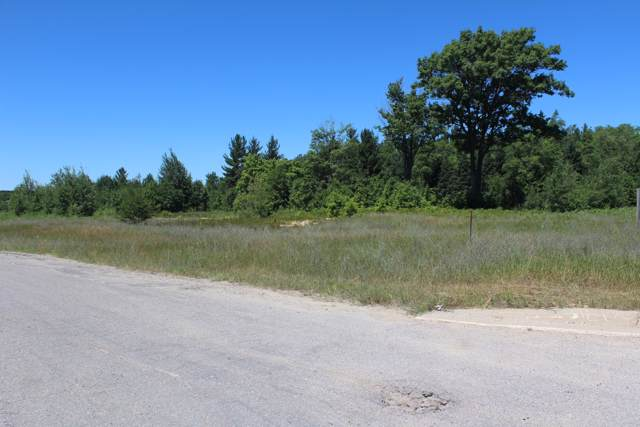 Clay Dr. Parcel 3, Cadillac, MI 49601 (MLS #19049464) :: JH Realty Partners