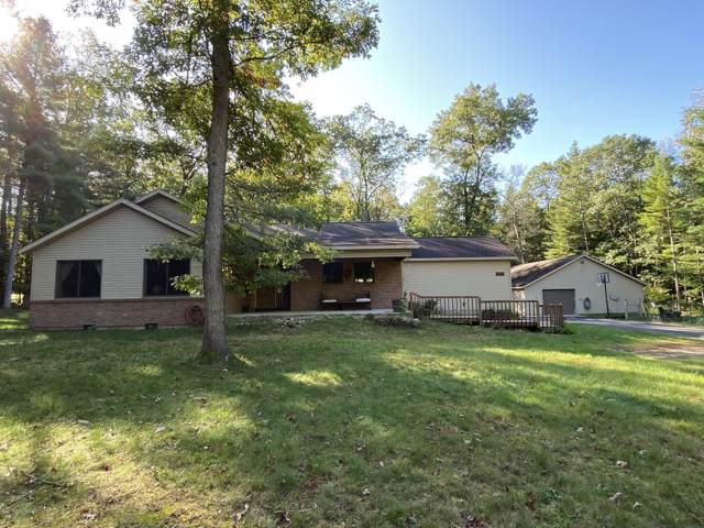4881 W 7 1/2 Mile Road, Irons, MI 49644 (MLS #19049608) :: JH Realty Partners