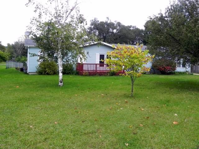 684 Kline Street, Colon, MI 49040 (MLS #19050084) :: Deb Stevenson Group - Greenridge Realty