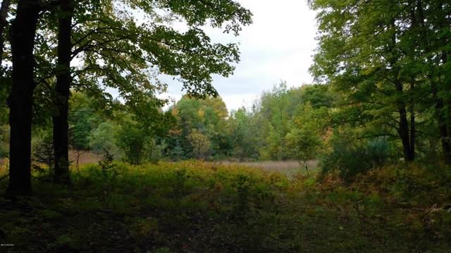 60-Acres Shann Road, Wolverine, MI 49799 (MLS #19050399) :: Deb Stevenson Group - Greenridge Realty