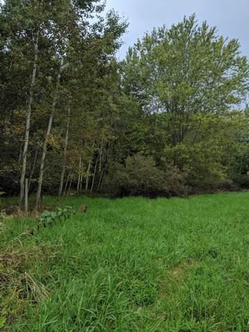 0 Country Lane, Ferrysburg, MI 49409 (MLS #19050657) :: Deb Stevenson Group - Greenridge Realty
