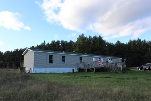 11309 75th Avenue, Mecosta, MI 49332 (MLS #19050667) :: Matt Mulder Home Selling Team