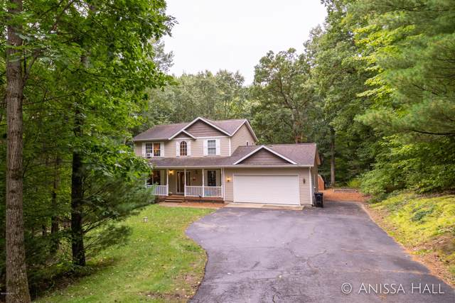 4687 Forest Vale Road, Pierson, MI 49339 (MLS #19051281) :: JH Realty Partners