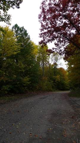 8-Lot W Kimberly Lane Lot #8, Pierson, MI 49339 (MLS #19051486) :: JH Realty Partners