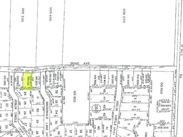 00 192nd Avenue, Big Rapids, MI 49307 (MLS #19051790) :: Deb Stevenson Group - Greenridge Realty