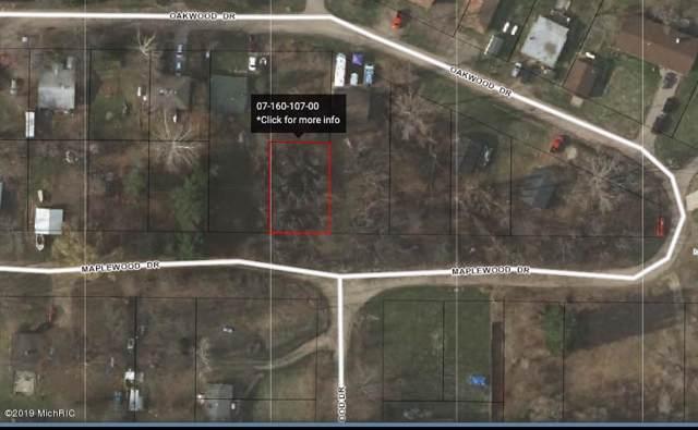 6240 Maplewood Drive, Delton, MI 49046 (MLS #19052311) :: Deb Stevenson Group - Greenridge Realty