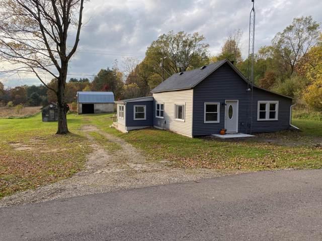 22601 Collier Avenue, Battle Creek, MI 49017 (MLS #19052480) :: Matt Mulder Home Selling Team