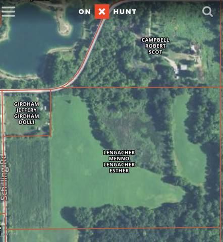 Reynolds Road, Hillsdale, MI 49242 (MLS #19052631) :: JH Realty Partners