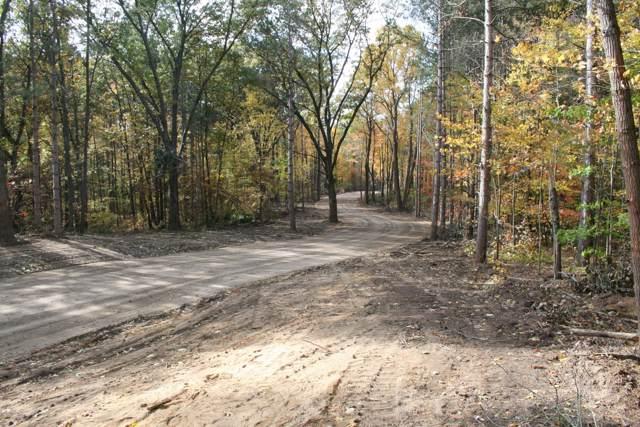 1 Pine Ridge Trail, Hamilton, MI 49419 (MLS #19052824) :: Jennifer Lane-Alwan