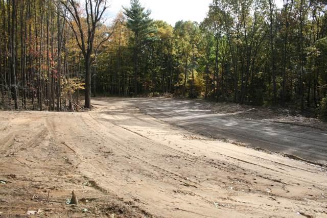 2 Pine Ridge Trail, Hamilton, MI 49419 (MLS #19052831) :: Deb Stevenson Group - Greenridge Realty
