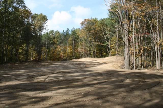 4 Pine Ridge Trail, Hamilton, MI 49419 (MLS #19052840) :: Deb Stevenson Group - Greenridge Realty