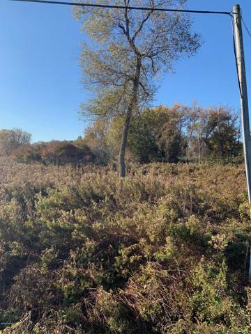TBD Hollow Corners Rd, Almont, MI 48003 (MLS #19052863) :: Ginger Baxter Group