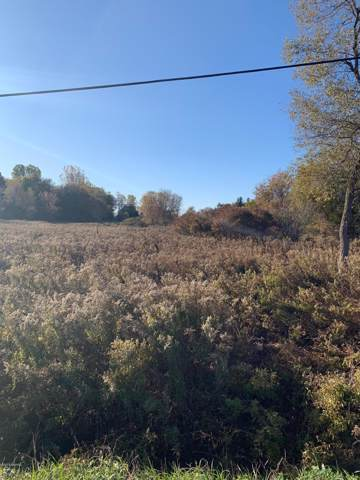 000 Hollow Corners Rd Lot A4, Almont, MI 48003 (MLS #19052877) :: Ginger Baxter Group