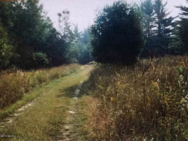 7703 Clements Road, Kaleva, MI 49645 (MLS #19052930) :: CENTURY 21 C. Howard