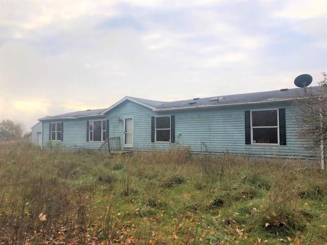 7354 W Van Buren Street, Hesperia, MI 49421 (MLS #19052995) :: Deb Stevenson Group - Greenridge Realty