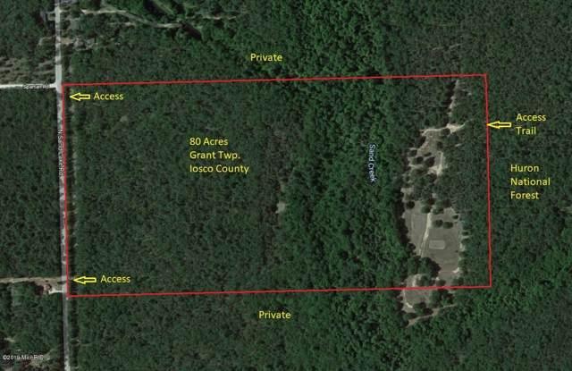 N Sand Lake Road, National City, MI 48748 (MLS #19053412) :: Deb Stevenson Group - Greenridge Realty