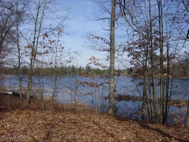 10738 N Beaver Trail, Bitely, MI 49309 (MLS #19053428) :: JH Realty Partners