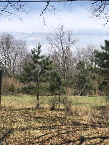 85 Morgan Road, Battle Creek, MI 49037 (MLS #19053480) :: Matt Mulder Home Selling Team