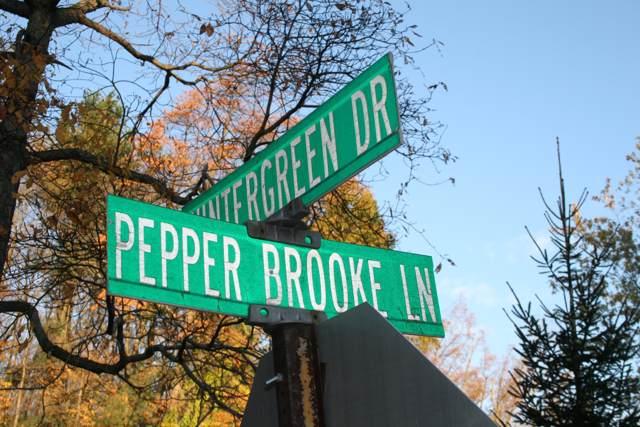 6477 Wintergreen Drive, Fennville, MI 49408 (MLS #19053557) :: JH Realty Partners