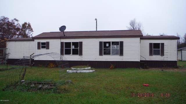 4053 E Fillmore Road, White Cloud, MI 49349 (MLS #19053779) :: Deb Stevenson Group - Greenridge Realty