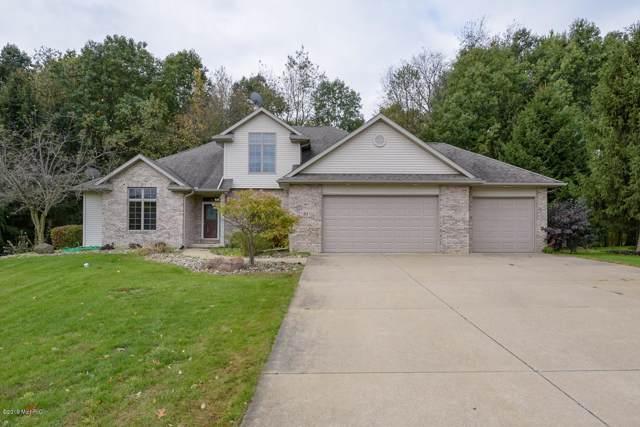 91 Country Hills Hills, Marshall, MI 49068 (MLS #19053781) :: Matt Mulder Home Selling Team