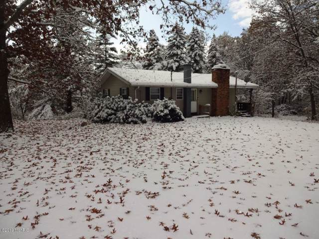 7565 Schow Road, Holton, MI 49425 (MLS #19054263) :: JH Realty Partners